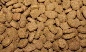 Hypoallergén kutyatáp kedvencünk védelméért