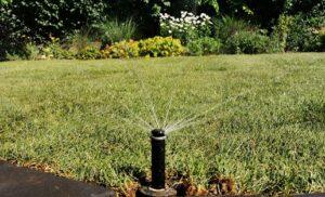Automata öntöző rendszerrel csodás lesz a kertje!